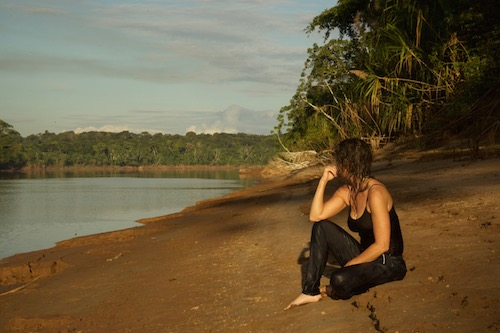 Pondering the future of the Amazon Rainforest