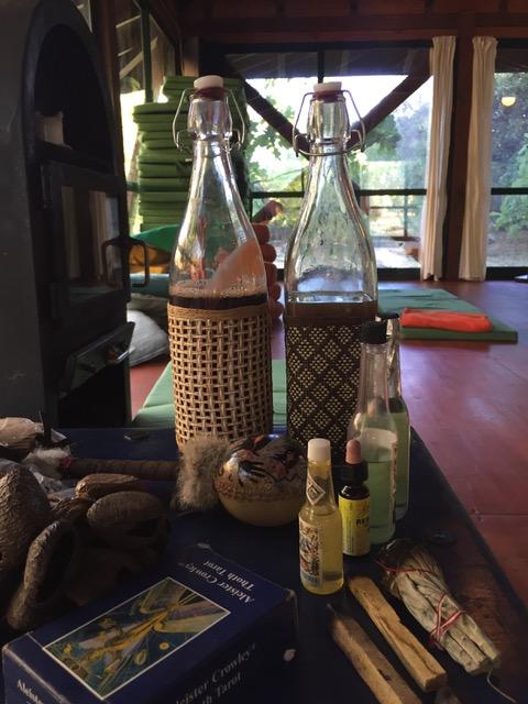 ayahuasca, allopathic medicine, huachuma