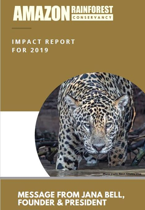 Read our Impact Report for 2019